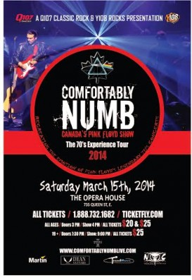 Comfortably Numb Pink Floyd Tribute