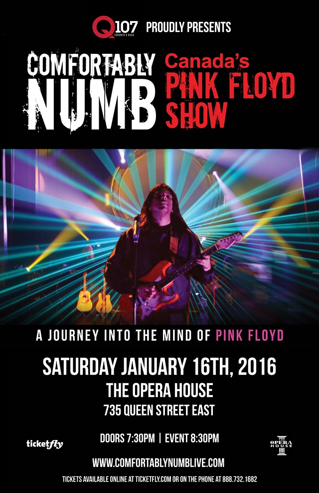 Comfortably Numb in Toronto
