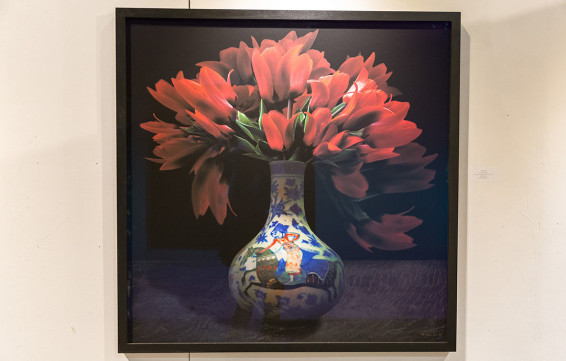 A Botanical Art Exhibition by TM Glass